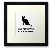 Kitten Meow Framed Print