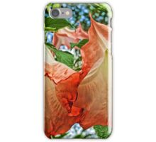 Angel's Trumpet Blossoms iPhone Case/Skin