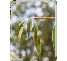 Frost on the willow tree iPad Case/Skin