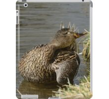 Mallard Yoga iPad Case/Skin