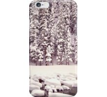 Bear Lake, Colorado _ American Cutouts iPhone Case/Skin