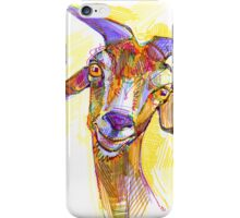 Goat drawing - 2011 iPhone Case/Skin