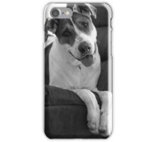 Playing it Cute, Beau the Bull Arab iPhone Case/Skin