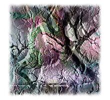 The Atlas Of Dreams - Color Plate 23 Photographic Print