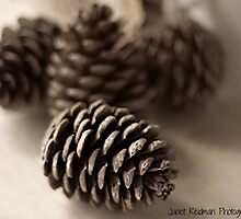 Pine cones by fruitcake