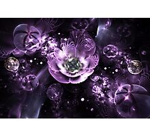 Crystal flowers Photographic Print