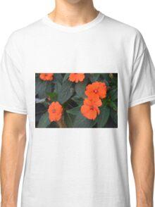 Orange flowers and green leaves bush. Classic T-Shirt