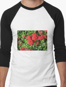 Red flowers bush. Men's Baseball ¾ T-Shirt
