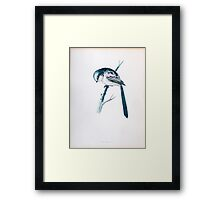 Long-tailed tit (Aegithalos caudatus) perching on a branch 19Th century artwork  Framed Print