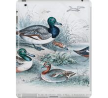 19th century artwork By J. Stewart Del containing: blue winged shoveler, Broad Bill, Teal, Harlequin Duck, Scaup duck and Red Headed Pochard  iPad Case/Skin