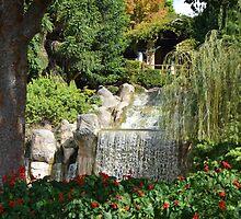Waterfall by Judy Woodman