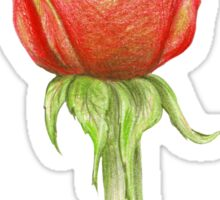 Rose_1 Sticker