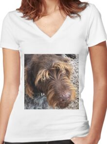 German Wirehaired Pointer dog Women's Fitted V-Neck T-Shirt