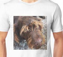 German Wirehaired Pointer dog Unisex T-Shirt