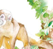 Scatter Monkey Sticker