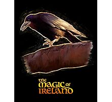The crow of The Magic of Ireland Photographic Print