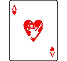 Ace Frehley playing card Photographic Print