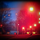 Night Lights at the Park by Nazareth