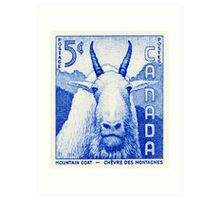 Canada postage stamp, 1956, mountain goat Art Print
