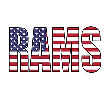 Rams Photographic Print