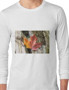 Maple leaf coloured from the Autumn over wooden trunk. Long Sleeve T-Shirt