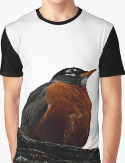 Robin Redbreast Graphic T-Shirt