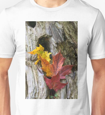 Maple Leaves Coloured from Autumn in yellow to red Unisex T-Shirt