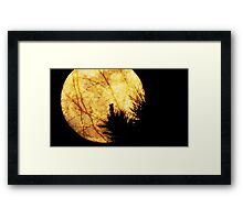 Moon Night Framed Print