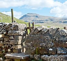 Stile to Ingleborough by Sue Knowles
