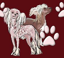 Chinese Crested Dogs by IowaArtist