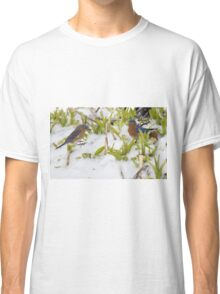 Bluebirds in snow Classic T-Shirt