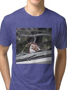 Gathering Twigs Tri-blend T-Shirt