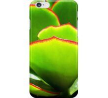 Succulent - PADDLE PLANT or Aeonium Tree iPhone Case/Skin