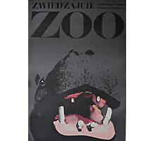 Hippo Zoo Poster Photographic Print