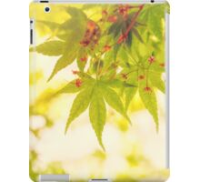 Green leaves of Japanese maple - vintage style iPad Case/Skin