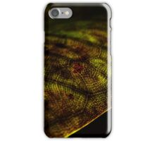 Funeral for a tree #22 iPhone Case/Skin