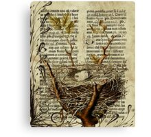 Nest Antique Bible Canvas Print