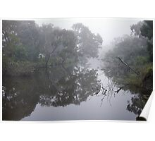 River Reflection - Barwon River Poster