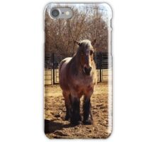 horse iPhone Case/Skin