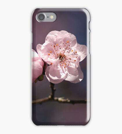 Blossom of PINK iPhone Case/Skin