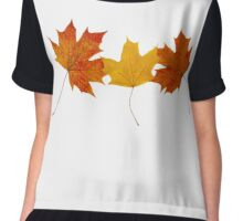 Maple leaves Chiffon Top