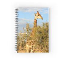 Swaziland Giraffe Spiral Notebook