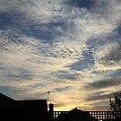 out my back door by geof
