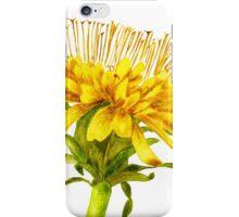 Flower dandelion large iPhone Case/Skin