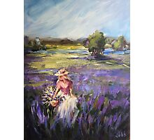 Lavender field Photographic Print