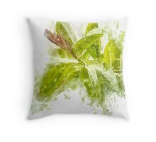 Close up of the Rubber tree AKA Rubber fig  Throw Pillow