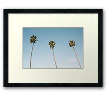 Summer palm trees Blue Framed Print