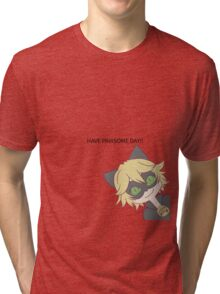 HAVE PAWSOME DAY!! Tri-blend T-Shirt