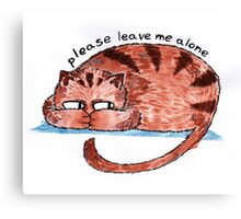 please leave me alone Canvas Print