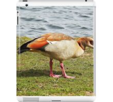 """A Stranger at Petworth Park""  ( sussex) iPad Case/Skin"
